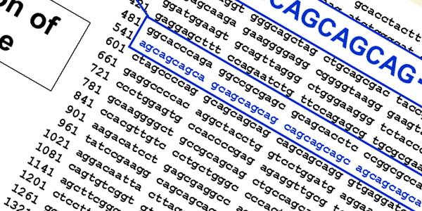 「将来のAGAになりやすい傾向と薬剤の効きやすさを遺伝子によって予測」アンドロゲンレセプターの遺伝子検査