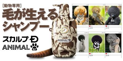 毛がフサフサに生える動物専用シャンプー 「スカルプDアニマル毛ア(ケア)」登場!※エイプリールフールの架空商品です