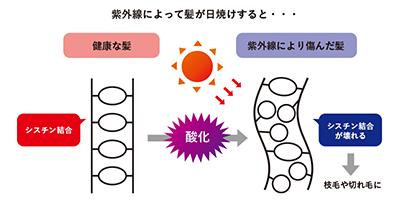 夏の頭皮環境に要注意! 紫外線と汗に共通する落とし穴とは・・・?!
