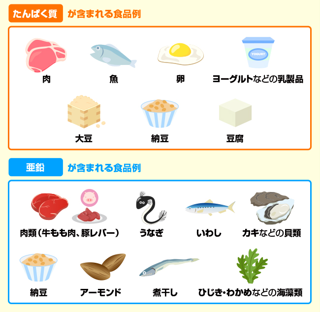 多い 食べ物 亜鉛