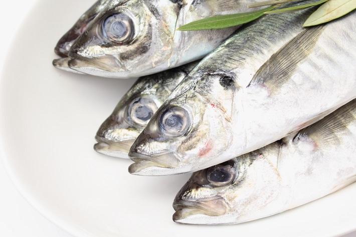 """【意外と知らない油の力3】 """"魚を食べると頭が良くなる""""..."""