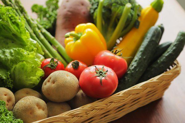 多い 食材 の コラーゲン