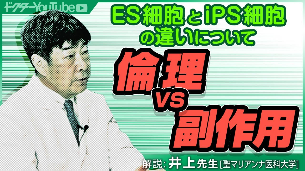 ES細胞とiPS細胞の違いについて聖マリアンナ医科大学の井上先生が解説!